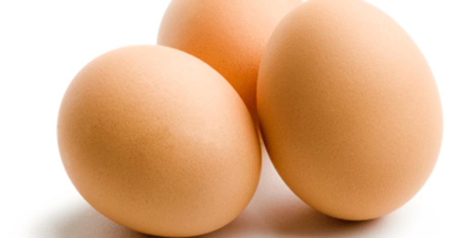 Recette konjac , l'omelette basse calories