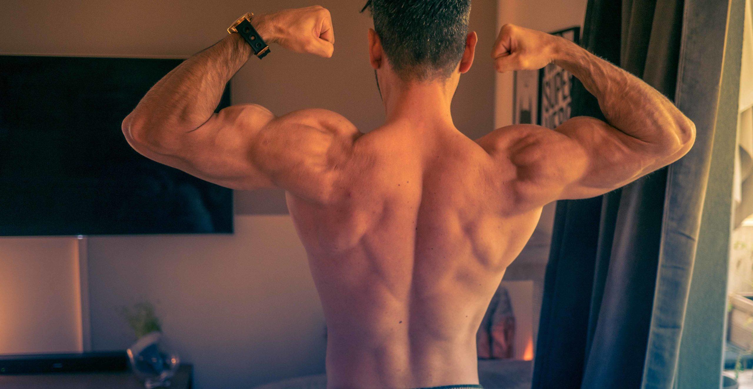 tour de taille musculation
